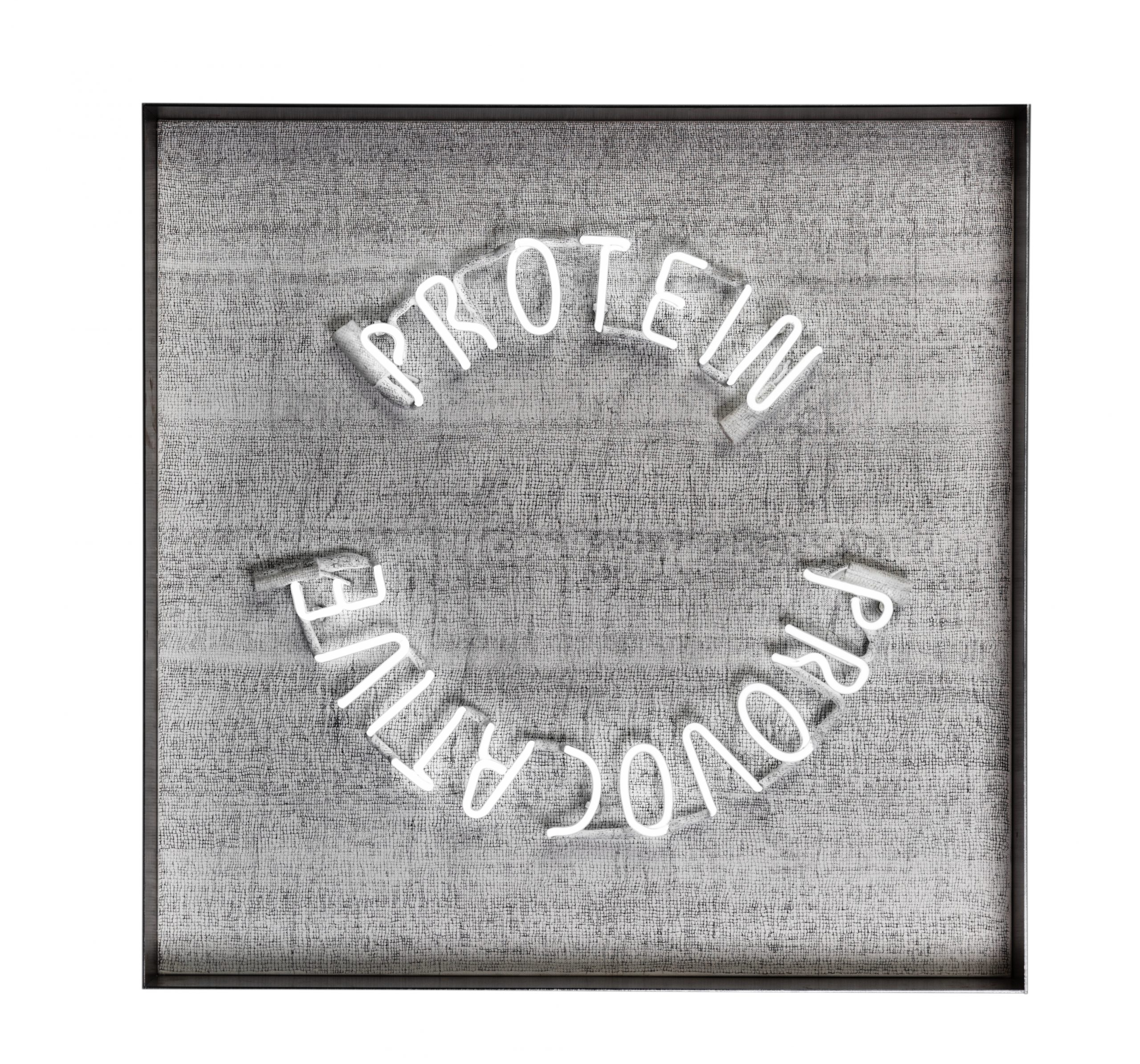 Protein Provocative